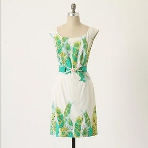 Anthropologie sketched Danios dress we love Vera